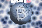 Bchd Developers宣布推出用于比特币现金的Neutrino钱包